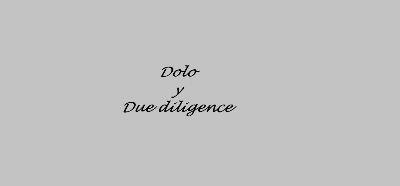 Dolo y Due Diligence